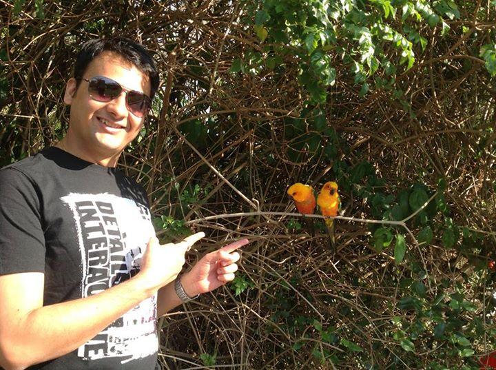 Love Birds?! Day 7 at Birds of Eden, Knysna, South Africa.