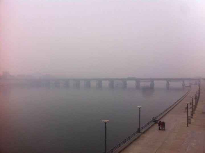 તાકાત હોય તો પતંગ ચગાવી બતાવો!!! Its Natures' way of protecting Birds. Man Proposes, God Disposes.   #Birds #Uttarayan #Fog