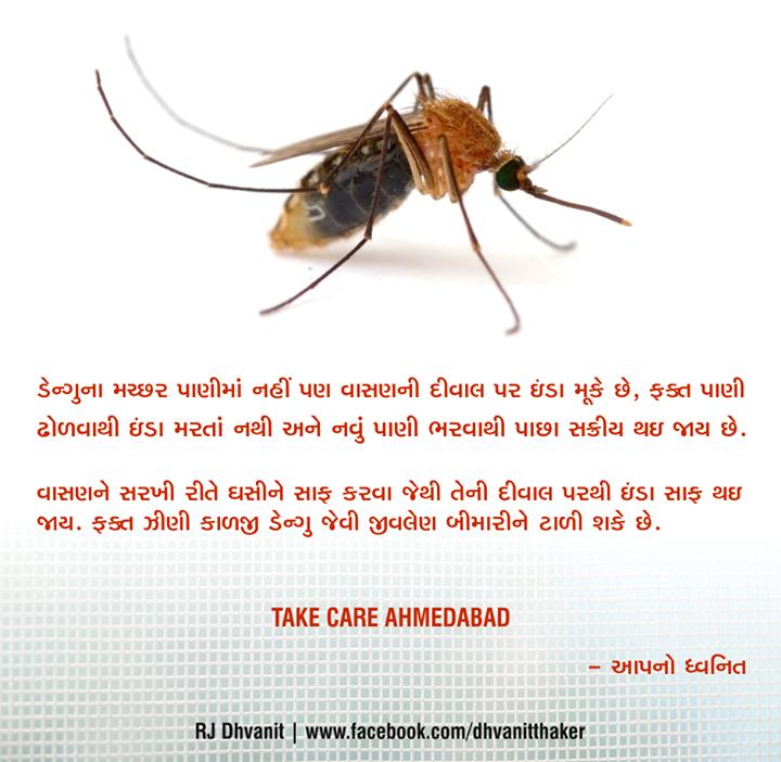 :: Take Care Amdavad. :: #Dengue #Mosquito