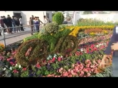 #preview of #flowershow 2017!  #amdavad