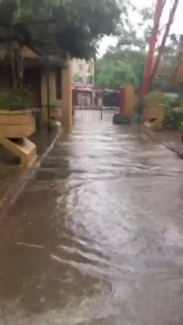 ચાલો તરવા!  #ahmedabadrain #rains #amdavad #facebooklive