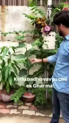 Hi Gurukul, Memnagar and Thaltej  Snippet of today morning's plantation.  #mirchitreeidiot #pedmandhvanit