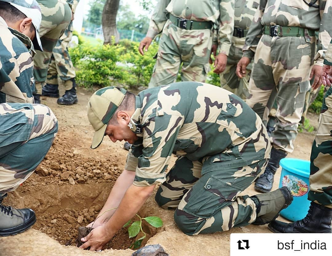 So happy to see this 😊 Borderman in service of #nature  #treeidiots #treeidiot3 #treeidiot #pedman #pedmandhvanit #पेड़mandhvanit #Repost #bsf  @bsf_india