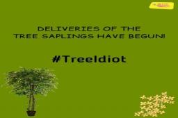 Tree Saplings ની ડીલીવરી ચાલુ થઈ ગઈ છે! જો તમે રજીસ્ટ્રેશન કરી લીધું હોય તો ૧૫ ઓગસ્ટ સુધી રાહ જુઓ. મહદંશે ત્યાં સુધીમાં તમારા રોપા તમને મળી જશે.  @omegaelevators present Mirchi Tree Idiot Season 5 with Green Mask-man Dhvanit  Supported by AMC  #Rjdhvanit #treeidiot  #aatmanirbharmirchitreeidiot #green #mirchitreeidiot #MirchiGujarati #Gujarat #amdavad #ahmedabad #treecare #treeinside #maskman #maskmandhvanit #deliverystarted