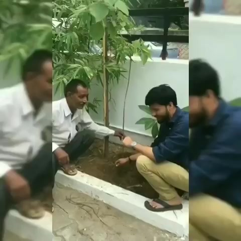 Finally planting tree saplings at my home.. #mirchitreeidiot #pedmandhvanit https://t.co/avpKujxENf